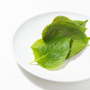 エゴマの葉|赤坂のサムギョプサルが美味しい韓国料理店「やさい村大地赤坂田町通り店」