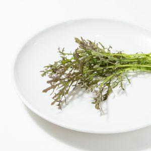 ピリカラ水菜|赤坂のサムギョプサルが美味しい韓国料理店「やさい村大地赤坂田町通り店」