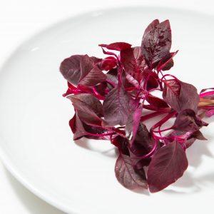 アマランサス|赤坂のサムギョプサルが美味しい韓国料理店「やさい村大地赤坂田町通り店」