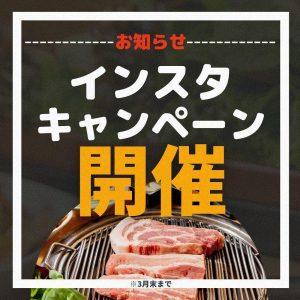 インスタキャンペーン|赤坂のサムギョプサルが美味しい韓国料理店「やさい村大地赤坂田町通り店」